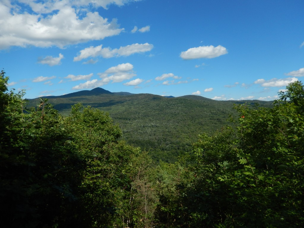 Jim Jeffords State Forest- View from Aitken State Forest